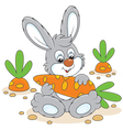 Bunny with a carrot vector image vector image