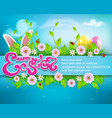 easter background with colored eggs bunny ears vector image