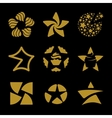 Isolated golden stars logo set Space vector image vector image