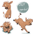 set cute cartoon calf vector image vector image