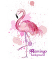 vintage flamingo watercolor card hand made vector image