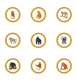 ape icons set cartoon style vector image vector image