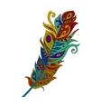 bright colored bohemian boho bird feather vector image