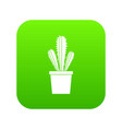 cactus in flower pot icon digital green vector image