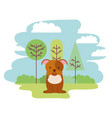 cute dog sitting in the park vector image vector image