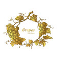 grapes frame hand drawing vintage engraving with vector image vector image