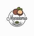 macadamia nut logo round linear vector image vector image