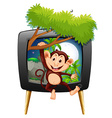 Monkey hanging on branch on tv screen vector image vector image