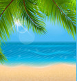 natural background with palm leaves and beach vector image vector image