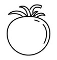raw tomato icon outline style vector image vector image