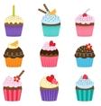 set cute cupcakes vector image