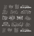 big collection of adventure outdoors and travel vector image
