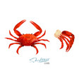 crab and meat crab in cartoon vector image vector image