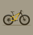 detailed bicycle with thick tires vector image