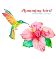 hummingbirds and hibiscus tropical flower vector image