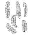 Isolated vintage quill feathers set vector image