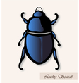 lucky scarab vector image