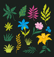set tropical leaves isolated on black vector image