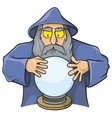 wizard ball vector image vector image