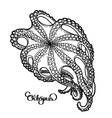 Graphic octopus in bottom view vector image vector image