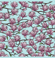magnolia spring seamless pattern vector image