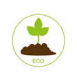 new born growing plant - ecological concept vector image vector image