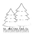 pine forest scene icon vector image