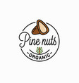 pine nut logo round linear peeled nuts vector image vector image