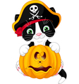 Pirate Kitten vector image vector image