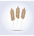 Wheat icon vector image vector image