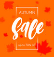autumn sale shopping discount poster fall maple vector image vector image