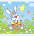 easter bunny with a basket of decorated eggs vector image