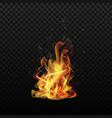 fire flame sparks flame isolated background vector image vector image