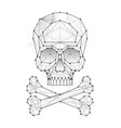 polygonal skull and bones vector image vector image