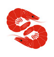 shrimp on white vector image vector image