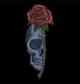 skull rose vintage vector image