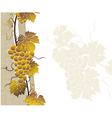 vine golden frame with templat vector image vector image