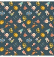 Zodiac icons seamless pattern vector image