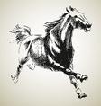 Sketh of horse vector image