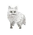 fox sketch set hand drawn vector image vector image