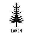 larch tree icon simple black style vector image vector image