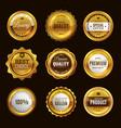 best certification golden sign gold design vector image vector image