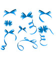 Blue Ribbon and Bow Set for Your Design vector image vector image