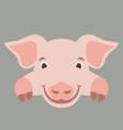 cartoon face pig flat vector image vector image