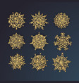 decorative snowflakes set series of winter vector image