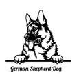 german shepherd dog peeking dog - head isolated vector image vector image