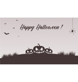 Happy halloween pumpkins backgrounds vector image vector image
