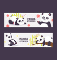 panda bearcat chinese bear with bamboo vector image