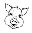 piglet portrait vector image vector image