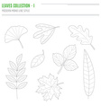 Set of leaves in modern line style vector image